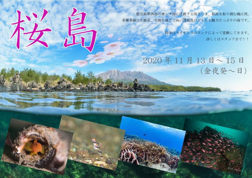 画像に alt 属性が指定されていません。ファイル名: 桜島.jpg