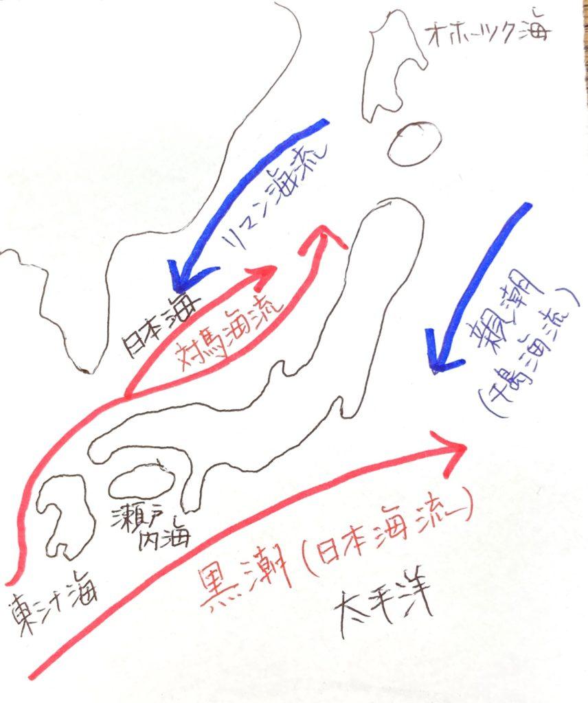 海流の図。